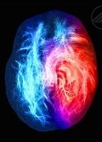 Brain on fire d131e0cd boxcover